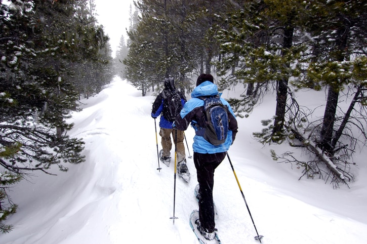 Snowshoeing through a trail in a forest