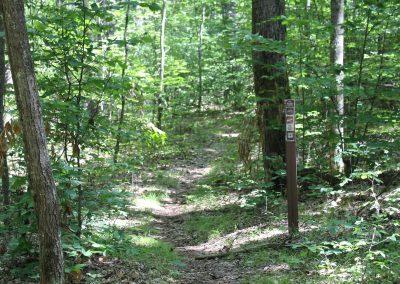 Hungerford Lake Trail