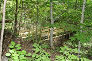 Consumers Rustic Trail brid