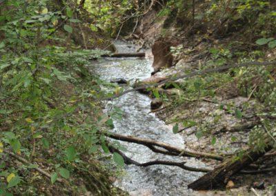 Hardy Dam Rustic Nature Trail