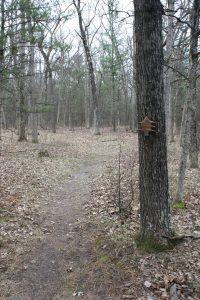 croton dam scenic trail path marker