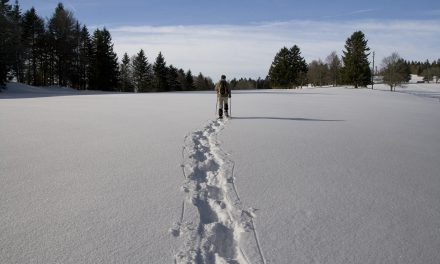 A Beginner's Guide to Snowshoeing Apparel