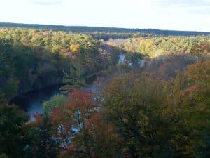 Aerial view of river in fall