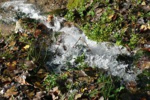 Water rushing in stream