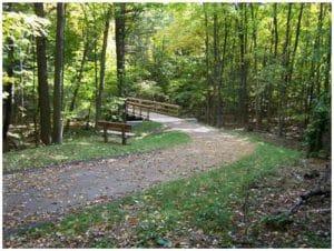 Fremont T & C Trail