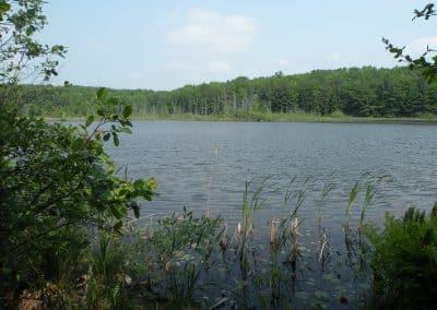 Loda Lake Wildflower Sanctuary