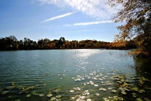 Fresh water lake in the fall