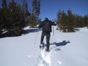 Man cutting trail through snow with snowshoes