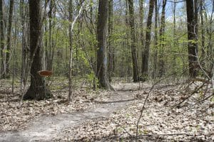 Ensley center deer trail