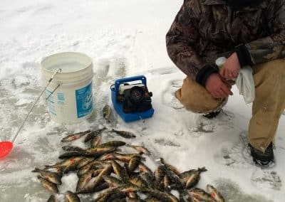 Man on ice with caught fish