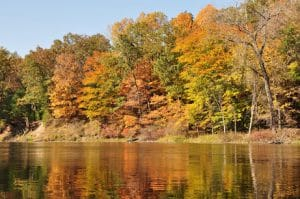 Fall colors on trees by river