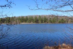 Loda Lake in Spring