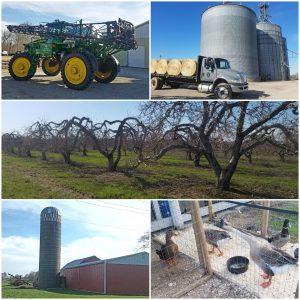 Gallery of farm scenes