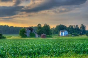 Farm landscape in Newaygo