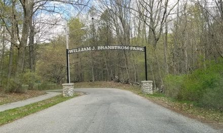 A Branstrom Park Day