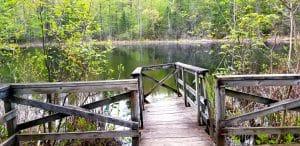 Wetland Trail observation deck