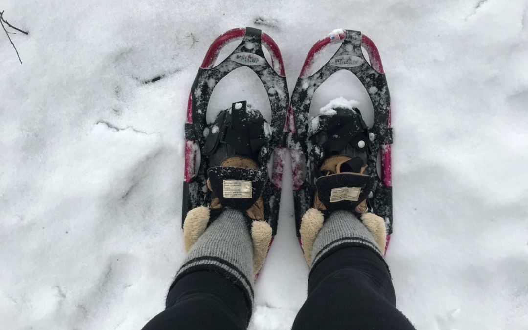 Snowshoe Adventure On The Dragon