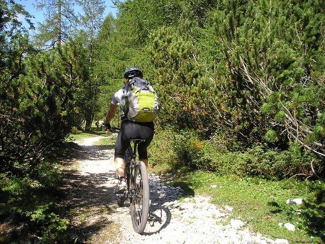 person mountain biking on wooded trail